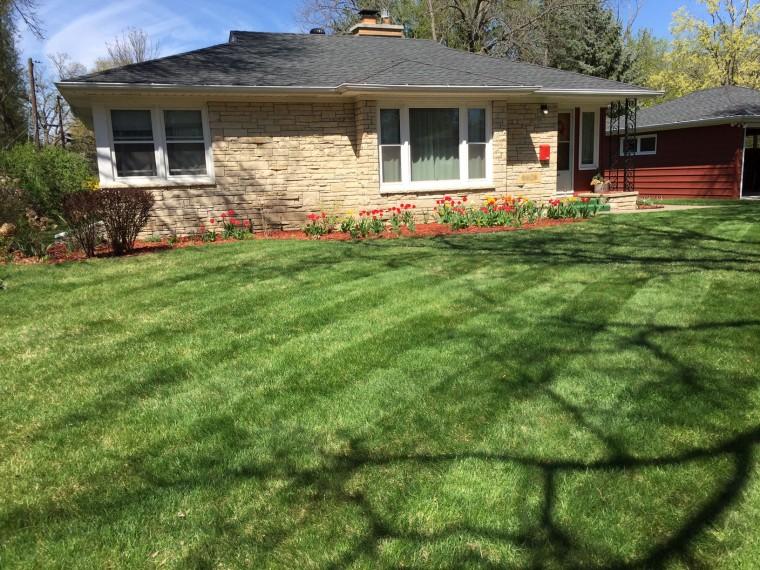 Garden Makeover | Style & the Suburbs