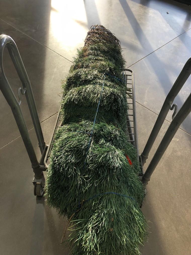 My 2019 Christmas Tree   Style & the Suburbs