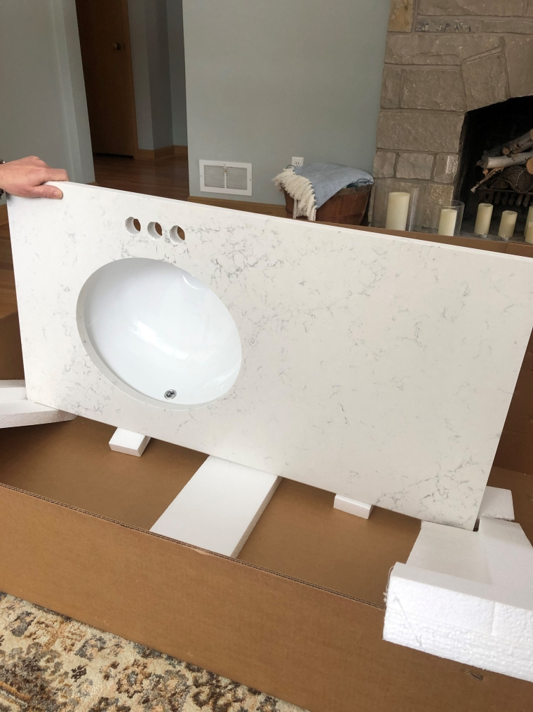 Bathroom Remodel: The Demo Begins | Style & the Suburbs